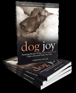 Dog-Joy-book-3D-1