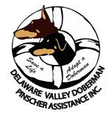 dvdpa-logo